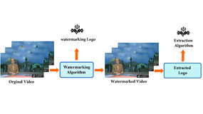 Video Forensic Watermarking